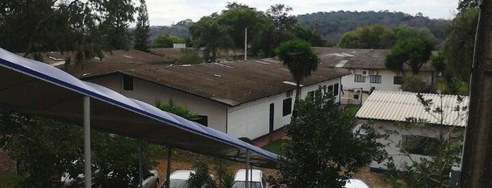 UFFS - Universidade Federal da Fronteira Sul is one of Lugares favoritos de Bruno.