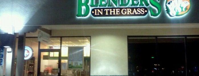 Blenders in the Grass is one of Posti che sono piaciuti a Ryan.
