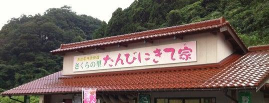 道の駅 さくらの里きすき is one of 道の駅.