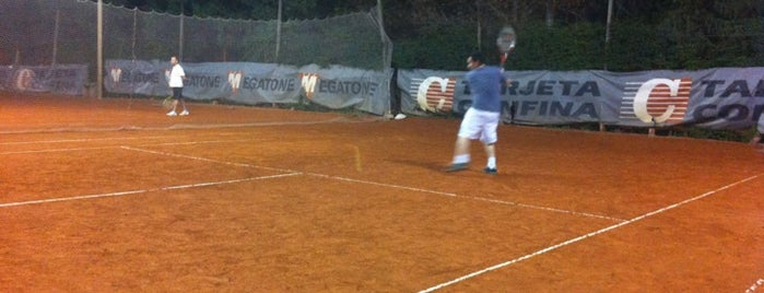 1er set - Tennis & Paddle is one of fungitron.