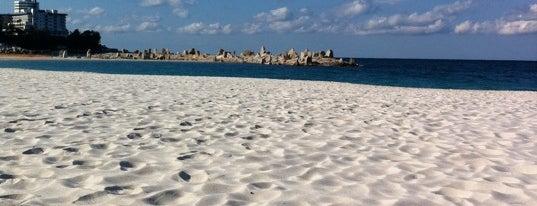 白良浜 is one of 日本の渚百選.