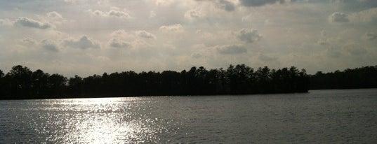 Atsion Lake is one of Dog friendly.