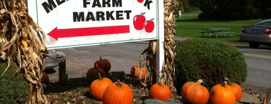Meadowbrook Farm is one of The Big Apple.