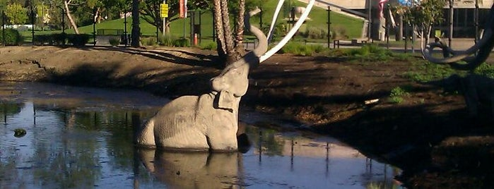 La Brea Tar Pits & Museum is one of #myhints4LosAngeles.