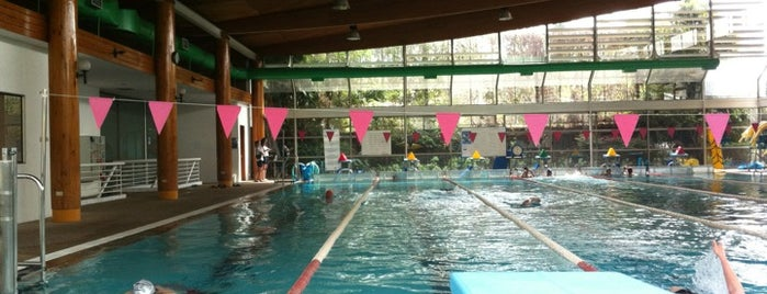 Centro Deportivo Providencia is one of All-time favorites in Chile.