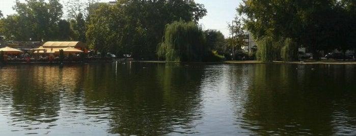 Városligeti-tó is one of Must Do's in Budapest.
