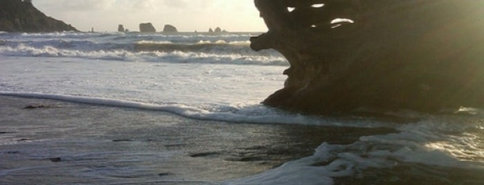First Beach is one of Twilight Tour.