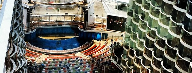 Royal Caribbean Oasis of the Seas is one of things to do.