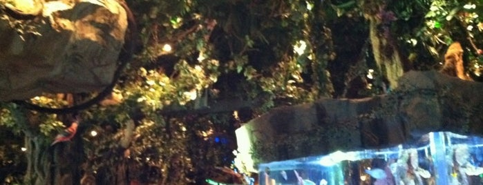 Rainforest Café is one of Disney Sightseeing: Downtown Disney.