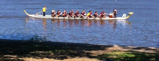 Dragon Boat Races! is one of 100 Things to Do in Philly.