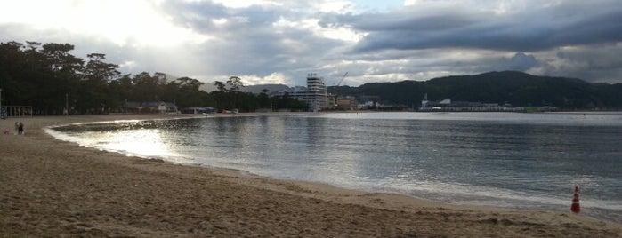 大浜公園 is one of 日本の白砂青松100選.