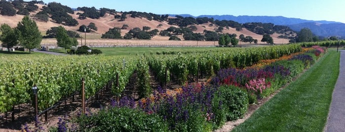 Rusack Vinyards is one of Santa Barbara.