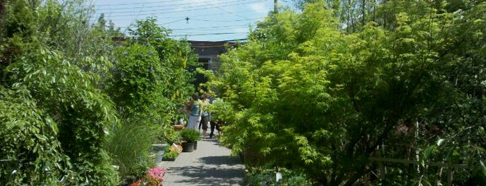 Chelsea Garden Center is one of Tempat yang Disukai Erik.
