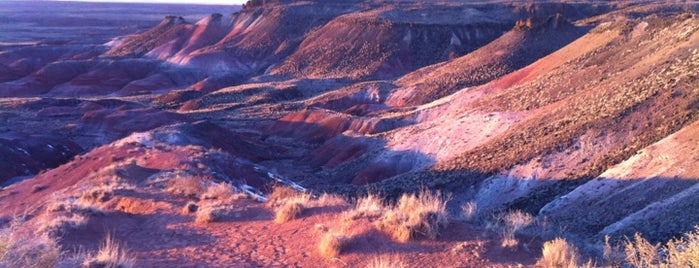 Painted Desert is one of US Landmarks.