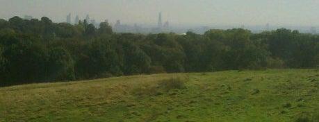 Hampstead Heath is one of Best Parks In London.