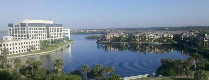 The Westin Tampa Bay is one of Tempat yang Disukai Tim.