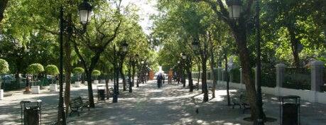 Paseo de la Princesa is one of ♪ En Mi Viejo San Juan ♫.