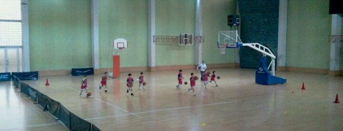 İTÜ Merkez Spor Salonu is one of Spor Tesisleri.