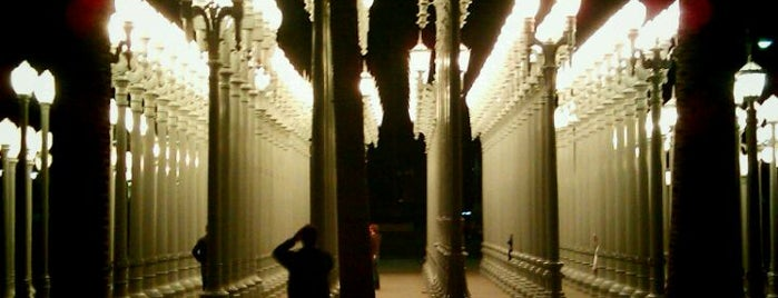 Los Angeles County Museum of Art (LACMA) is one of LA's To do list.