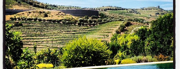 Quinta do Vallado Wine Hotel is one of PORTUGAL.