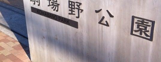 駒場野公園 is one of 西郷どんゆかりのスポット.