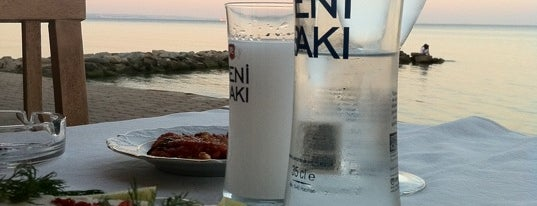Balık Ali Restaurant is one of Posti che sono piaciuti a Seval.
