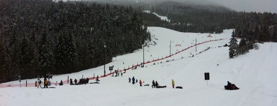 Coca Cola Tube Park is one of Whistler Blackcomb Top 10.