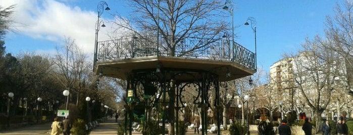 La Dehesa (Parque de la Alameda de Cervantes) is one of Pinchos en Soria.