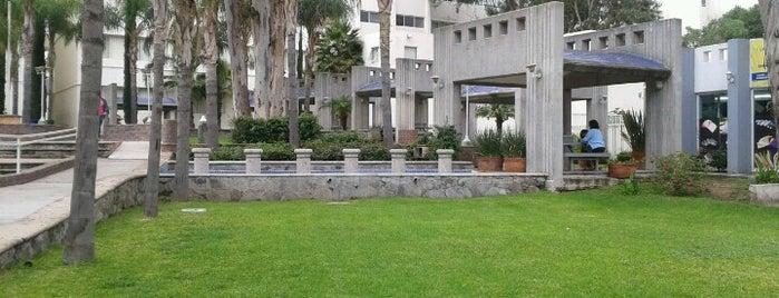 Centro Universitario de Ciencias de La Salud (CUCS) is one of สถานที่ที่ Dinorah ถูกใจ.