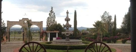 Hotel Hacienda Tres vidas is one of Tempat yang Disukai Italian.