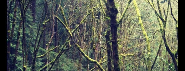 Marquam Nature Park is one of Portland.