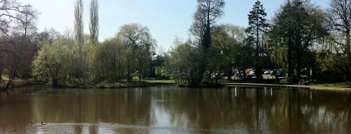 Midhurst Pond is one of Tempat yang Disukai 🐝Nhag.