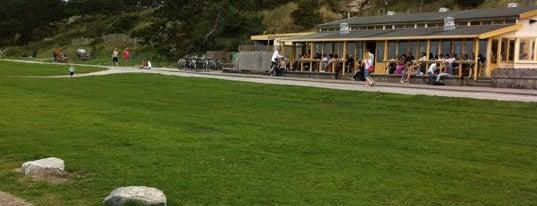 De Walvis is one of Misset Horeca Café Top 100 2012.