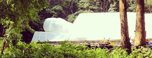 Buddha Statue (49 meters) is one of Muine.