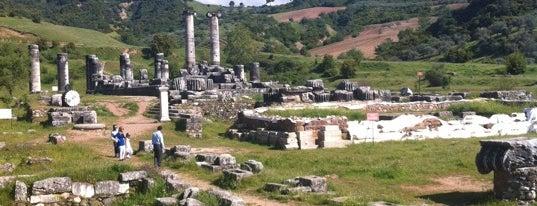 Artemis Tapınağı is one of Manisa.
