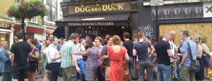 Dog and Duck is one of UK and Ireland bar/pub.