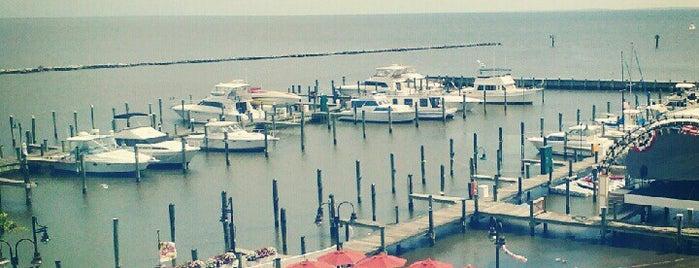 Chesapeake Beach Resort & Spa is one of สถานที่ที่ DaByrdman33 ถูกใจ.