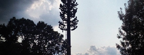 Cell Phone Tower Vaguely Shaped Like a Tree is one of Good Morning 4√ The Walton Family2 <3.