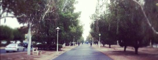 Mamsha Mishref is one of Posti che sono piaciuti a 9aq3obeya.