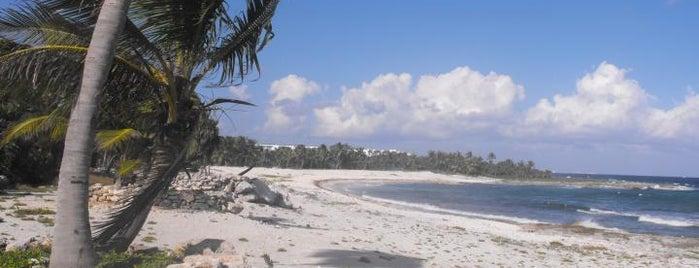 Sirenis Beach is one of สถานที่ที่ Hector ถูกใจ.