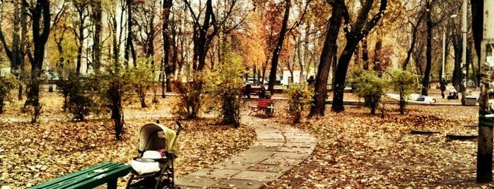 Павлівський сквер is one of Dating places.