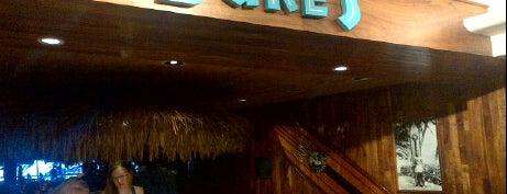 Duke's Waikiki is one of Oahu: The Gathering Place.
