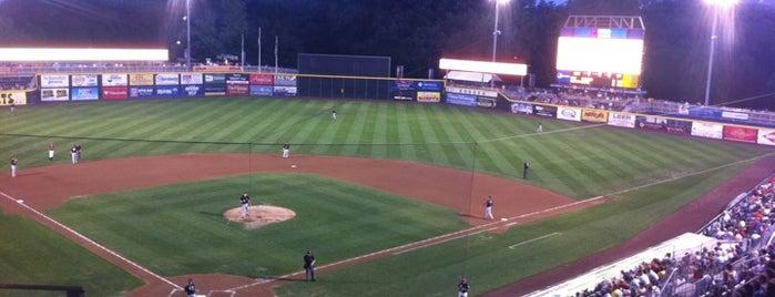 FNB Field is one of Baseball Stadiums in U.S.A..