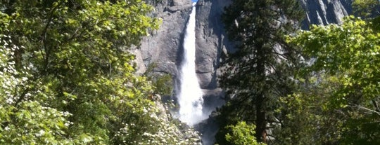 Yosemite National Park is one of Best Places to Check out in United States Pt 2.