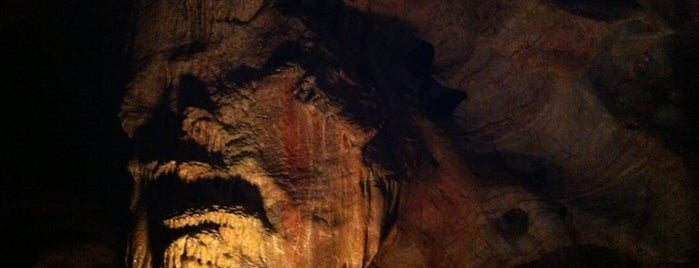 Kents Cavern Caves is one of Torquay (and surrounding area) to do list.