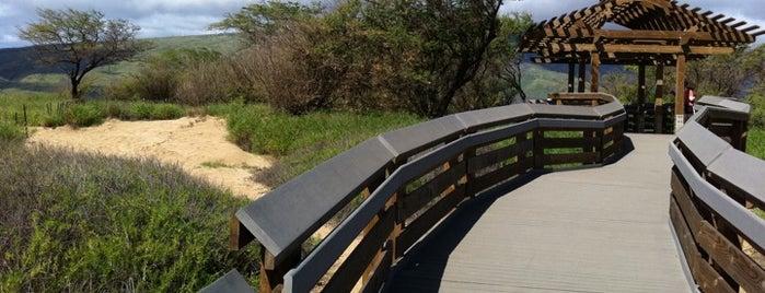 Kealia Coastal Boardwalk is one of Ryan'ın Beğendiği Mekanlar.