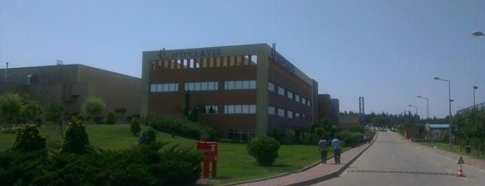 Novartis - Kurtköy Fabrika is one of Pendik.