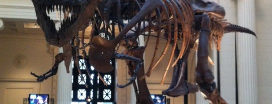 Muséum Field is one of Things to do in Chicago.