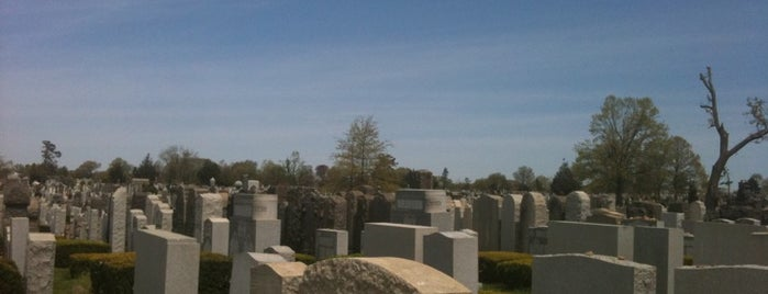 Mount Hebron Cemetery is one of To do.