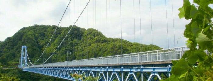 竜神大吊橋 is one of 茨城県北ジオパークのジオサイト.